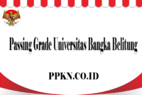 Passing Grade Universitas Bangka Belitung