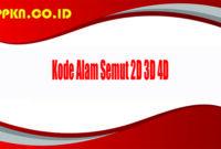 Kode Alam Semut 2D 3D 4D